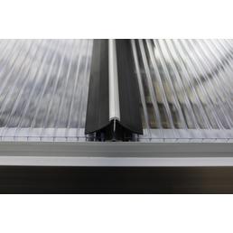 MR. GARDENER Windsicherung, für 4 mm starke Hohlkammerplatteneindeckungen, Länge: 170 cm